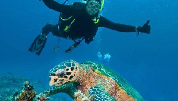 Man diving in Tenerife