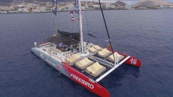 Freebird catamaran from the air