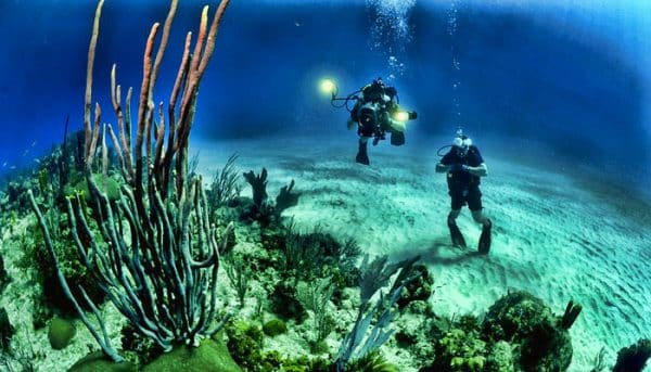 2 divers taking underwater pictures