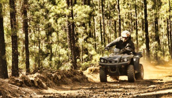 Un homme conduit un quad à travers une forêt