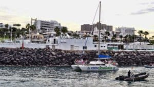 Eden Catamaran is leaving the harbor