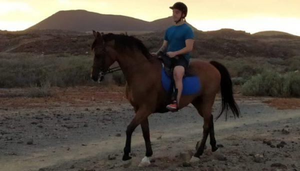 Horse riding trip Tenerife
