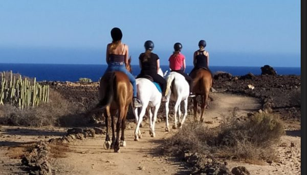 Group of horse riders riding to a beach in Tenerife