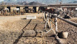 paardenstal op Tenerife