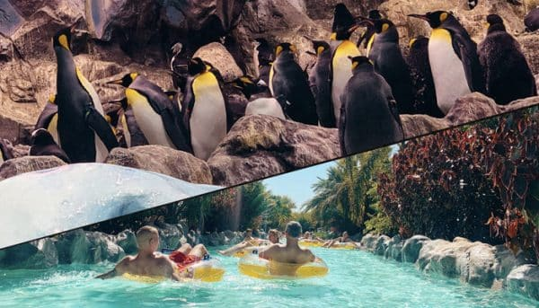 Twin ticket for Loro Parque and Siam Water Park