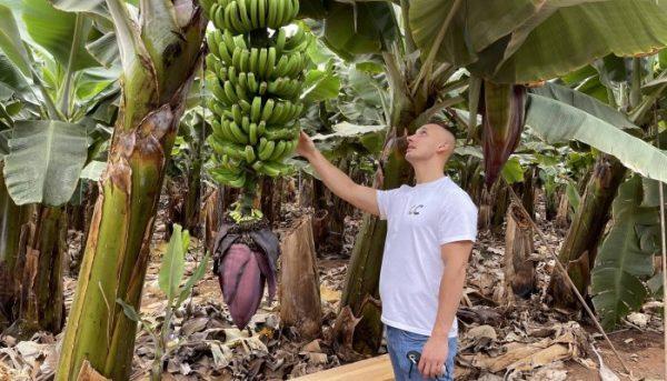Roy Schijvens in a banana plantation in Tenerife