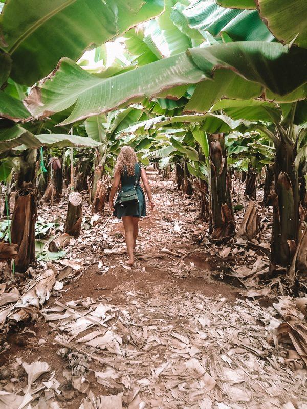 Lady enjoying a visit to a banana plantation in tenerife