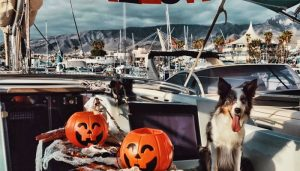 Halloween boat trip event