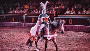 Verklede ridder in Tenerife