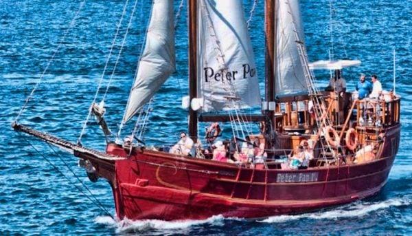 Peter Pan op een walvistocht