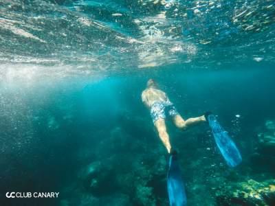 tenerife snorkeling, snorkeling in tenerife, snorkel spots tenerife