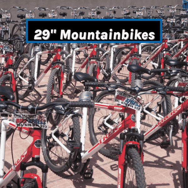 Hire mountainbike in Tenerife