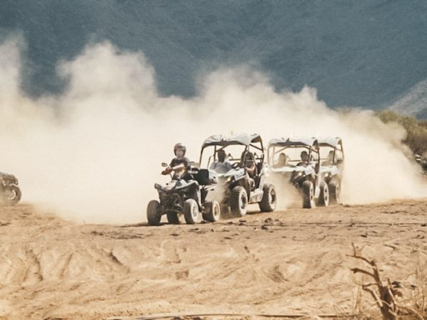 Group of buggies and quad offroad driving