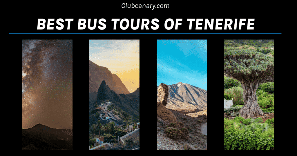 most popular bus tours of Tenerife