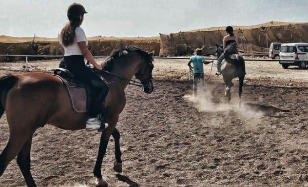 girl riding horses